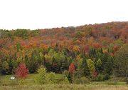 Fall color in Northeast Kingdom