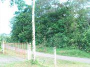 Our Land In La Vieja Costa Rica