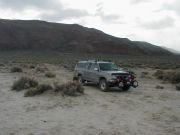 Desert Rattin'