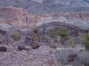 Arizona Historic Route 66- Sittgrieves Pass
