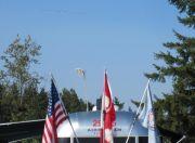 Snowbirds Over Airstream