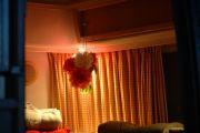 peonies in hanging vase