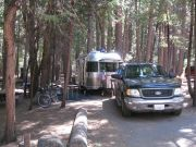 Ob Bambi Snuggles Into Camp With Max-tv