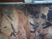 Floor rot by the door