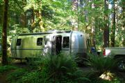 Iron Creek Campground Near Randle Wa