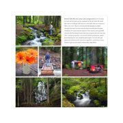 Ramona Falls And Camp Creek