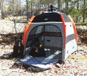Our New Pup Tent