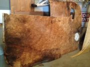 Old Subfloor Bottom With Mold