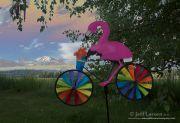 Flamingo Envy