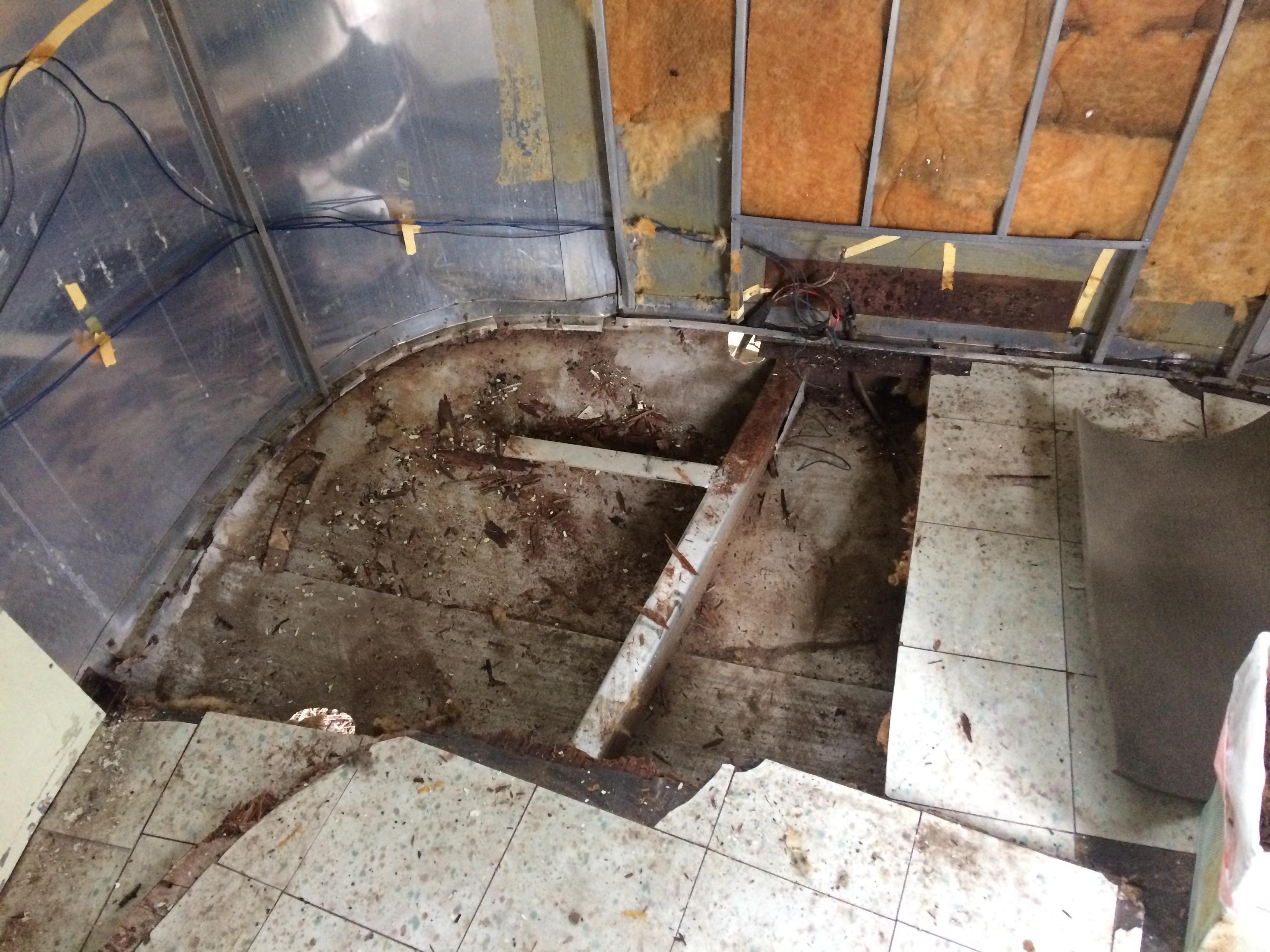 55 Safari Floor Removal
