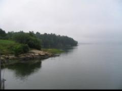 650Wolf_s_Neck_Landscape_81.jpg