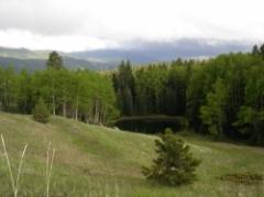 Peakview_pond.jpg