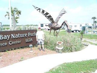 Click image for larger version  Name:Matagorda Bay Nature Park 2.JPG Views:196 Size:199.3 KB ID:100238