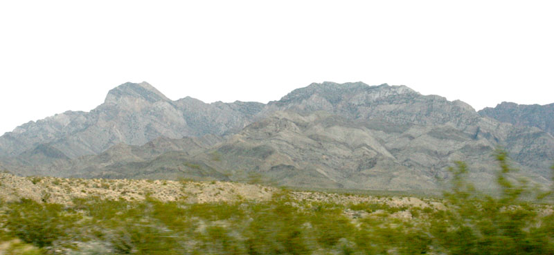 Click image for larger version  Name:IMG_0604 mojave preserve-s.jpg Views:54 Size:82.2 KB ID:100652