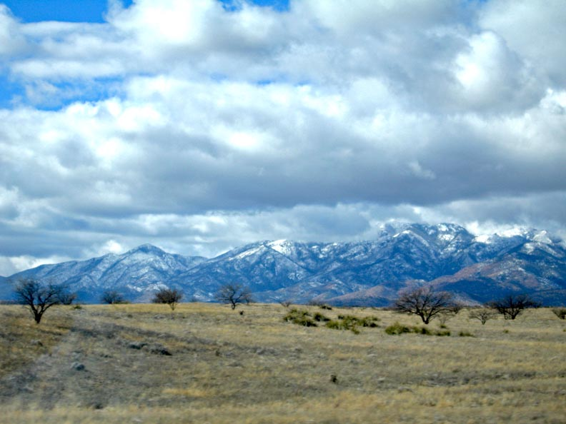 Click image for larger version  Name:Patagonia_Jan10_05_Sm.jpg Views:48 Size:93.7 KB ID:101698
