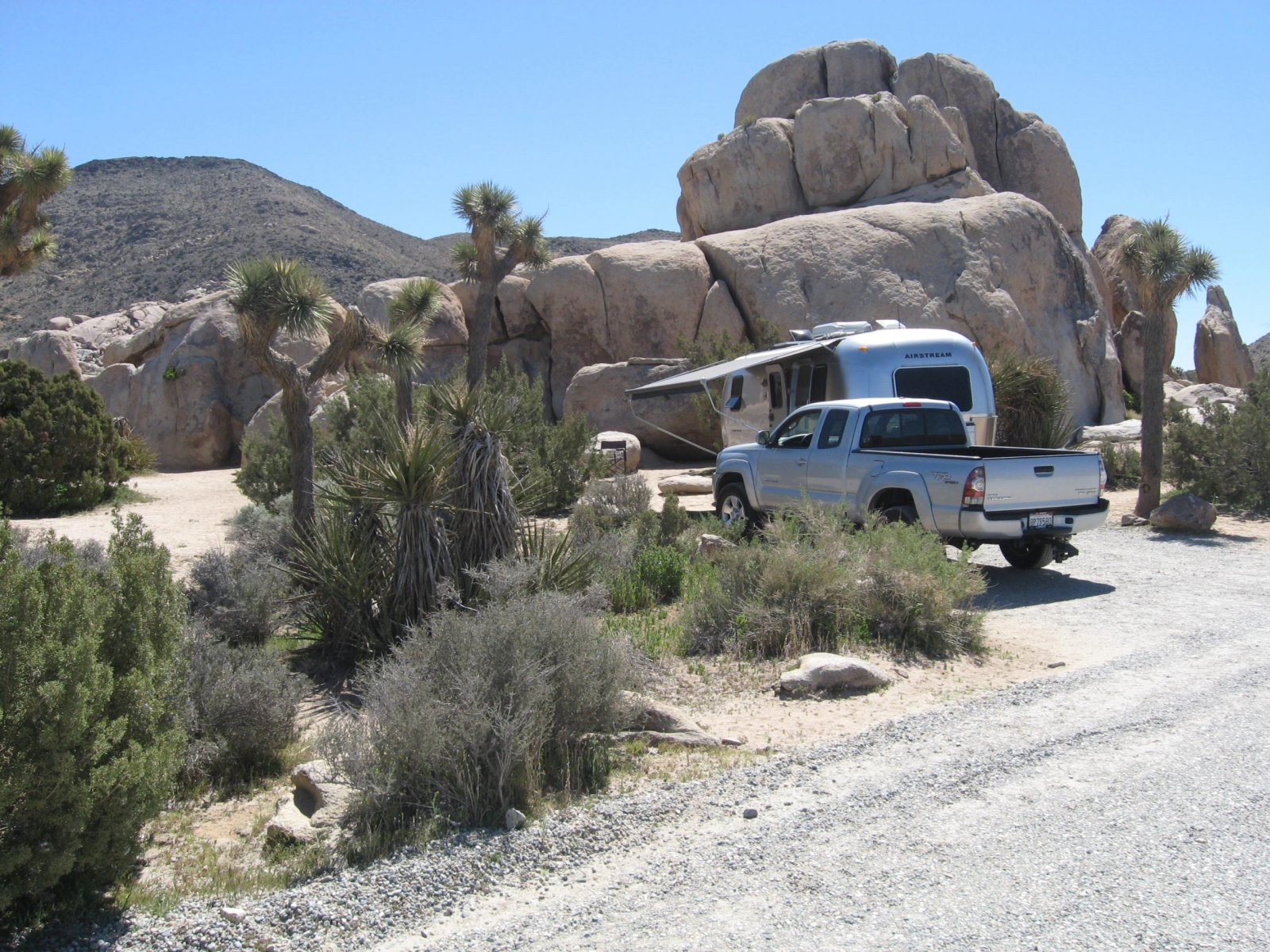 Click image for larger version  Name:Joshua Tree National Park.2.jpg Views:93 Size:444.5 KB ID:101969