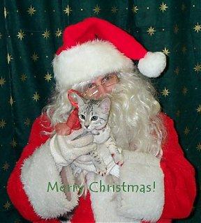 Click image for larger version  Name:santa.jpg Views:184 Size:47.9 KB ID:1091