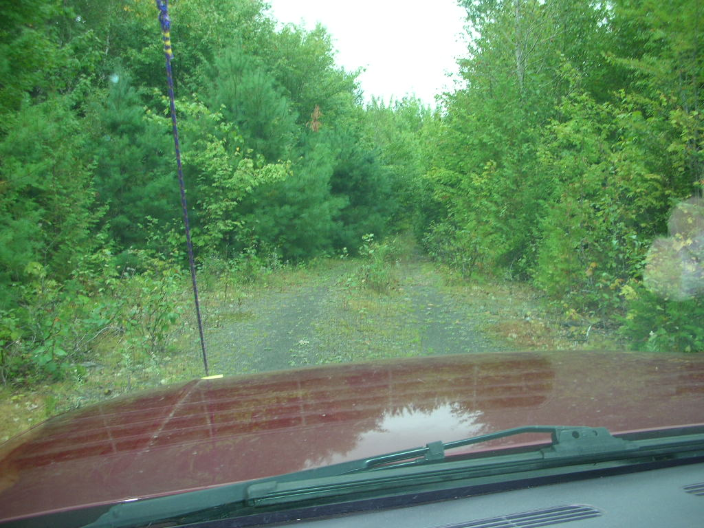 Click image for larger version  Name:North Maine Woods 3.JPG Views:60 Size:187.2 KB ID:110426