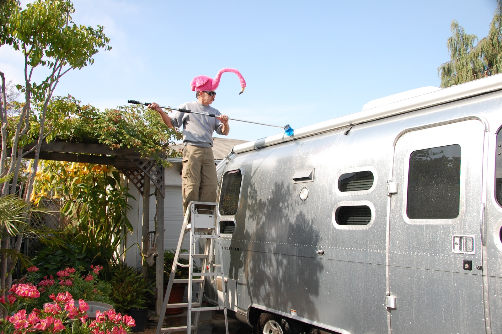Click image for larger version  Name:DSC_0070 Washing brush & flamingo.jpg Views:115 Size:536.5 KB ID:110825