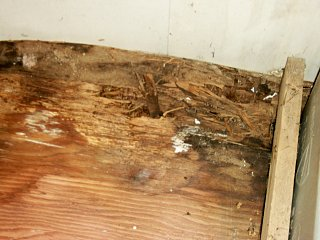 Click image for larger version  Name:argosy rotted floor.jpg Views:144 Size:239.9 KB ID:112765