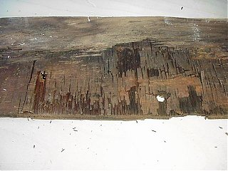 Click image for larger version  Name:Plywood damage under rear C channel a.JPG Views:206 Size:45.3 KB ID:11313