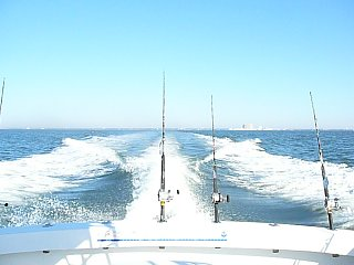 Click image for larger version  Name:Vacation 2010 3 016.jpg Views:66 Size:159.7 KB ID:114057