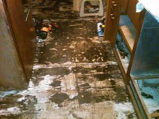 Click image for larger version  Name:floor in trailer.jpg Views:101 Size:121.3 KB ID:116880