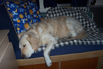 Click image for larger version  Name:Haily on Bed.jpg Views:105 Size:74.8 KB ID:11977