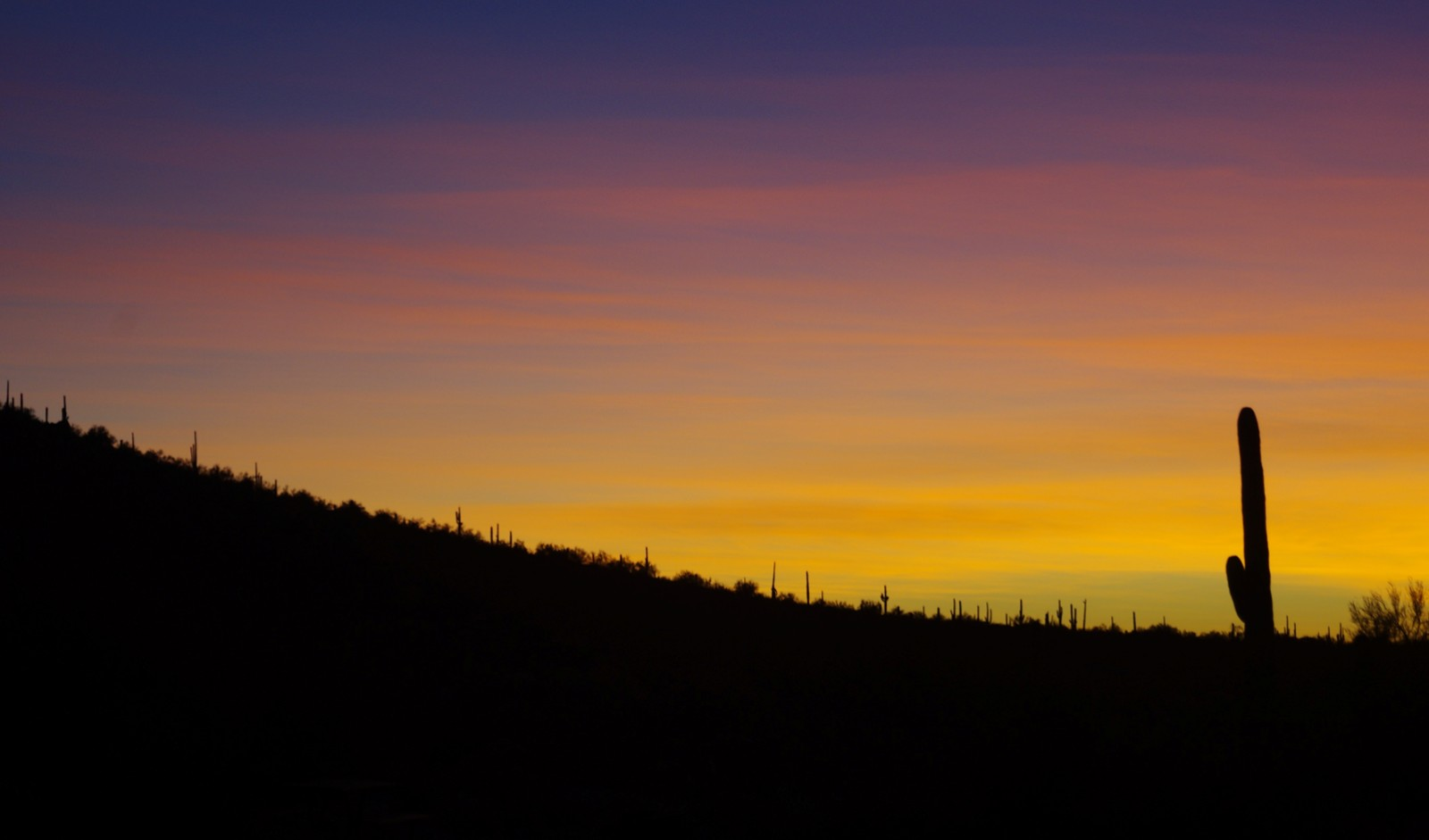 Click image for larger version  Name:Picacho-Sunset.jpg Views:68 Size:100.4 KB ID:121587