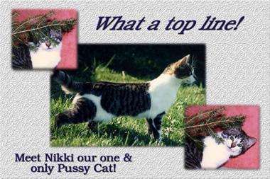 Click image for larger version  Name:Nikki .jpg Views:135 Size:91.7 KB ID:12312