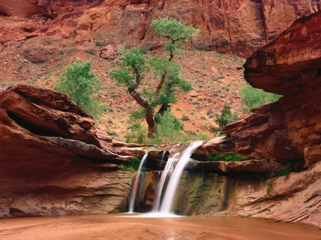 Click image for larger version  Name:coyote-gulch-escalante-river-canyons-utah1-450x337_239114100_std.jpg Views:196 Size:62.6 KB ID:127879