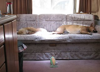 Click image for larger version  Name:CampingNap.jpg Views:149 Size:90.1 KB ID:134781