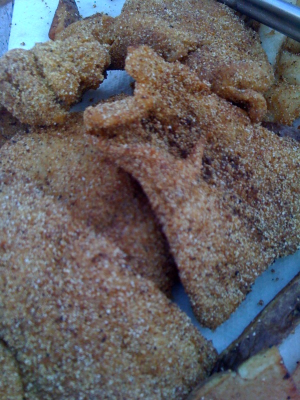 Click image for larger version  Name:Cornmeal Crusted Catfish 080410.jpg Views:47 Size:180.1 KB ID:137050