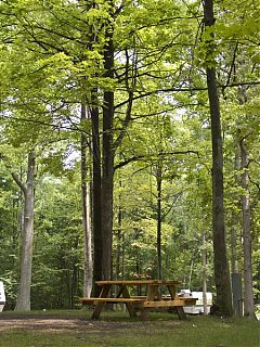 Click image for larger version  Name:campsites3.jpg Views:145 Size:67.9 KB ID:13806