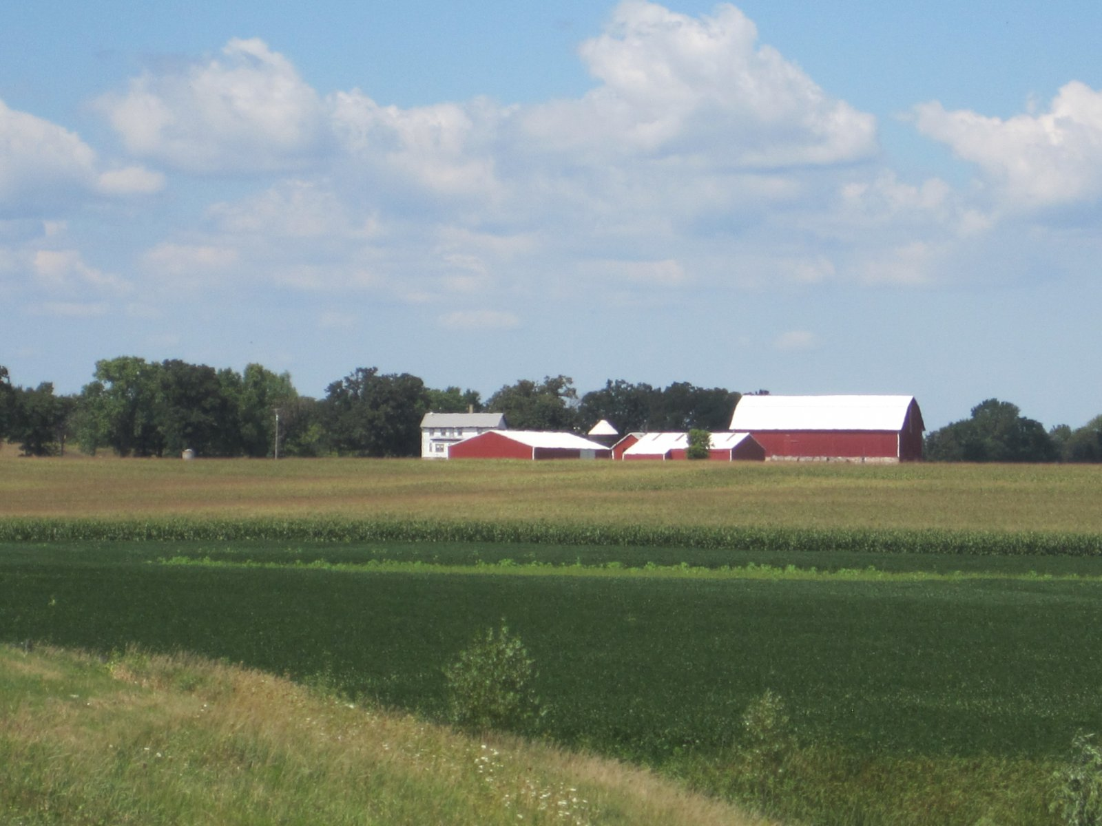Click image for larger version  Name:Wisconsin 002.jpg Views:43 Size:219.5 KB ID:138539