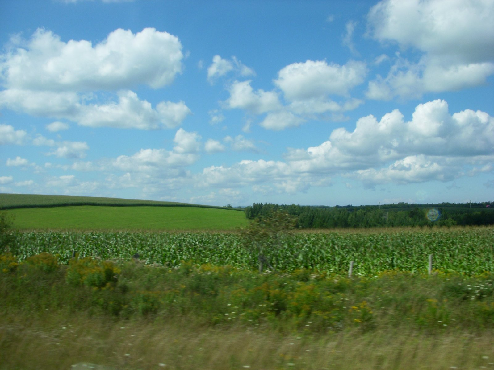 Click image for larger version  Name:Grand Pre' Aug2011 004.jpg Views:53 Size:232.3 KB ID:138787