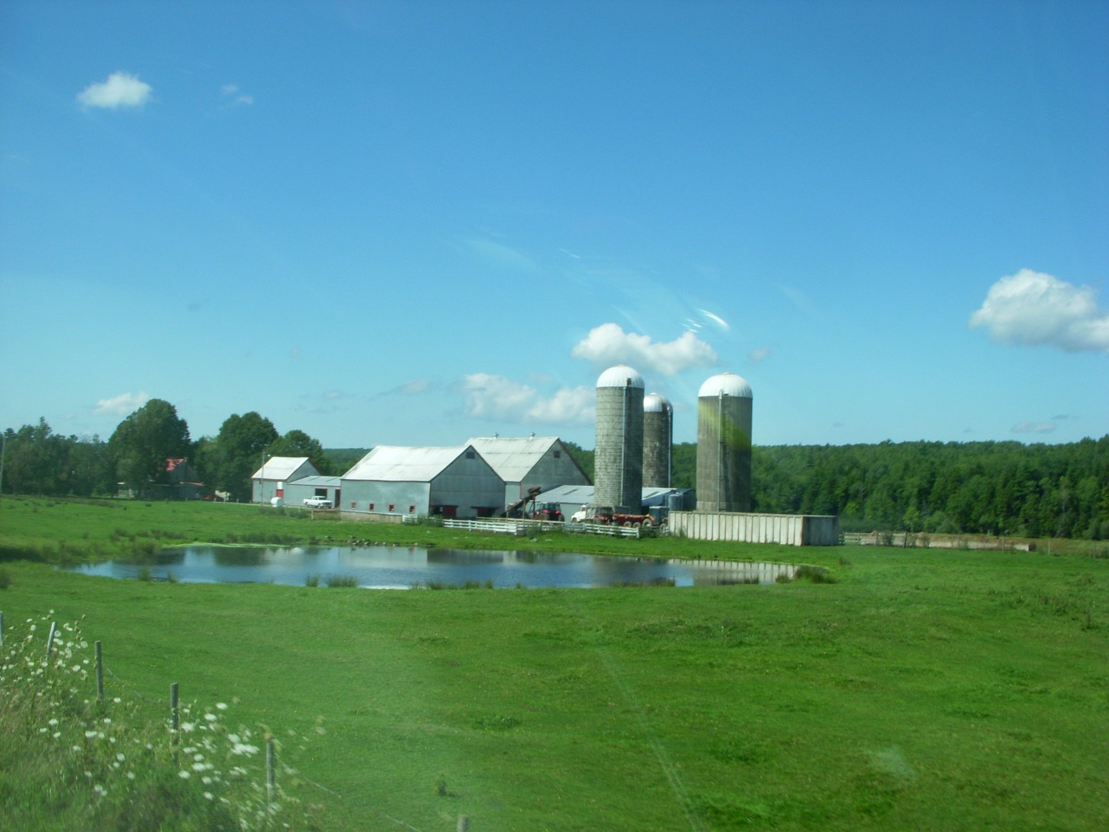 Click image for larger version  Name:Grand Pre' Aug2011 010.jpg Views:53 Size:220.3 KB ID:138788