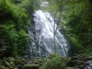 Click image for larger version  Name:Crabtree Fall.jpg Views:132 Size:654.8 KB ID:138795