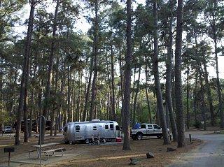 Click image for larger version  Name:Bastrop State Park 2.jpg.jpg Views:102 Size:509.5 KB ID:138806