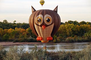 Click image for larger version  Name:theowl.jpg Views:72 Size:79.2 KB ID:141770