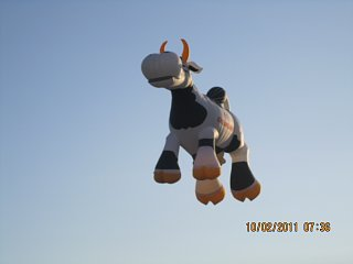 Click image for larger version  Name:If Cows Could Fly.JPG Views:72 Size:255.1 KB ID:142396
