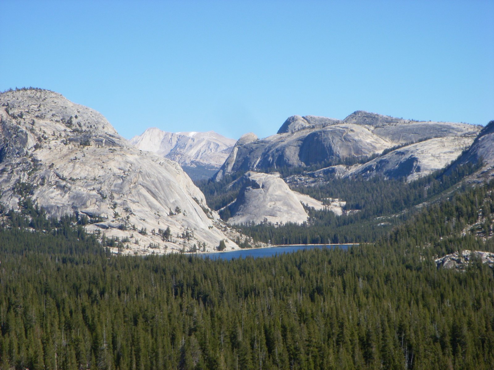 Click image for larger version  Name:Yosemite Oct2011 1812.jpg Views:78 Size:317.1 KB ID:144376