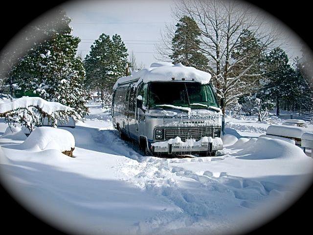 Click image for larger version  Name:DSCN0085:Bess flag snow .jpg Views:97 Size:76.1 KB ID:147814