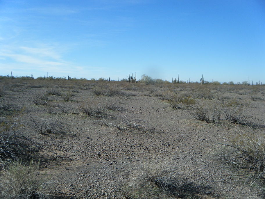 Click image for larger version  Name:Picacho Peak Tres Amigos.jpg Views:53 Size:314.0 KB ID:148267