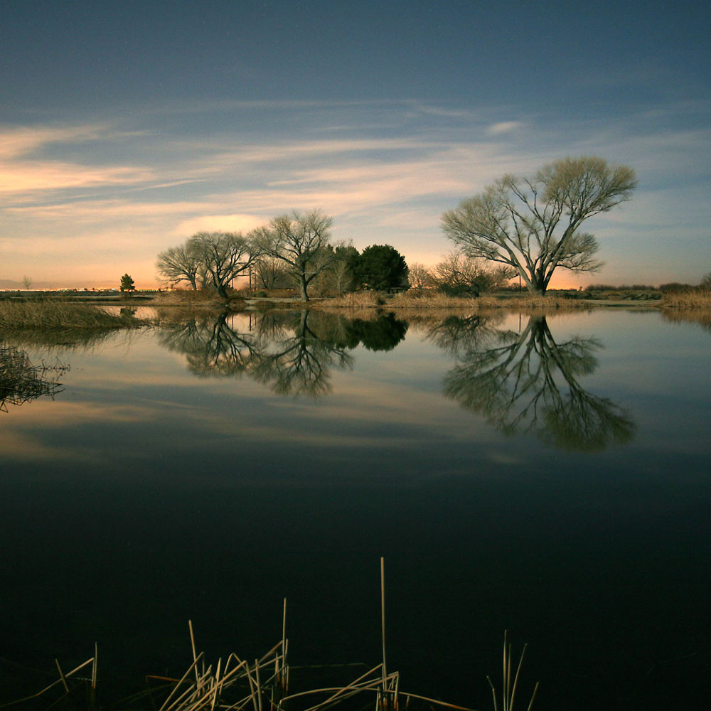 Click image for larger version  Name:P-Branch Pond Full Moon-cropped-s.jpg Views:117 Size:178.2 KB ID:150657