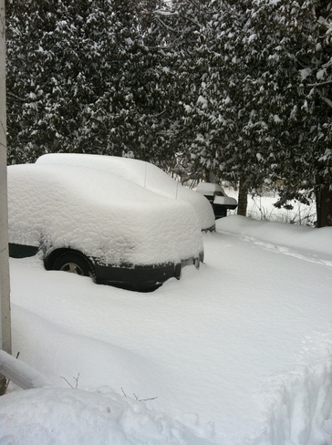 Click image for larger version  Name:Snow At Home.jpg Views:68 Size:86.2 KB ID:151104