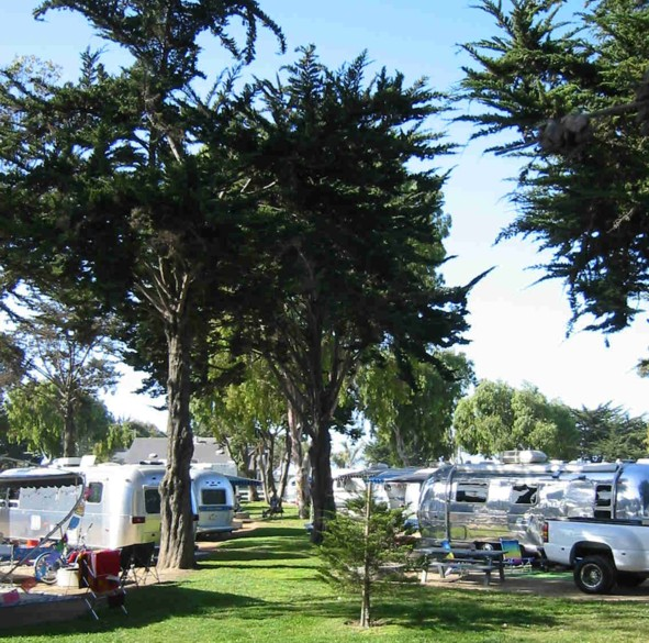 Click image for larger version  Name:pismo_053.jpg Views:78 Size:144.6 KB ID:15188