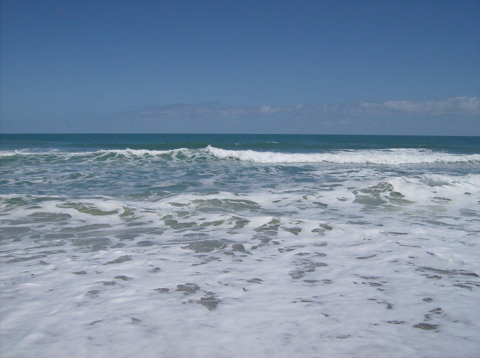 Click image for larger version  Name:Playalina Beach & Florida Gators 001.jpg Views:89 Size:238.2 KB ID:153341