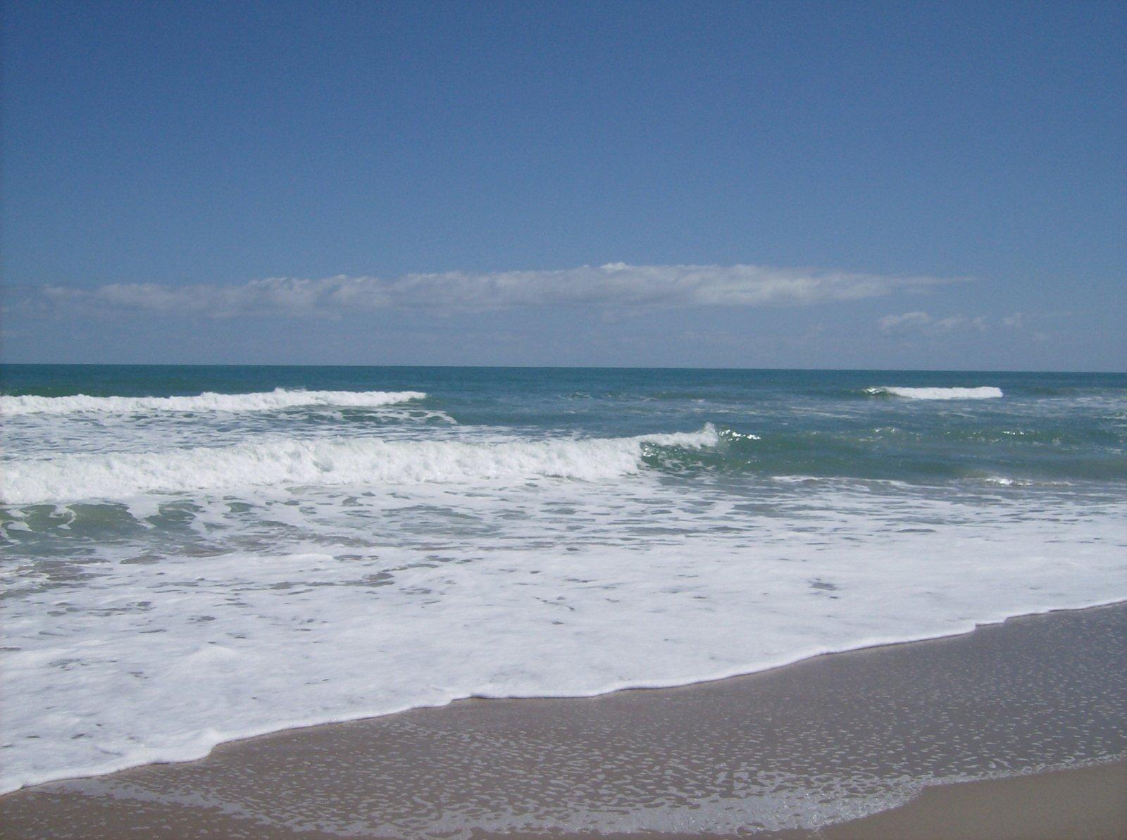 Click image for larger version  Name:Playalina Beach & Florida Gators 002.jpg Views:88 Size:215.6 KB ID:153342