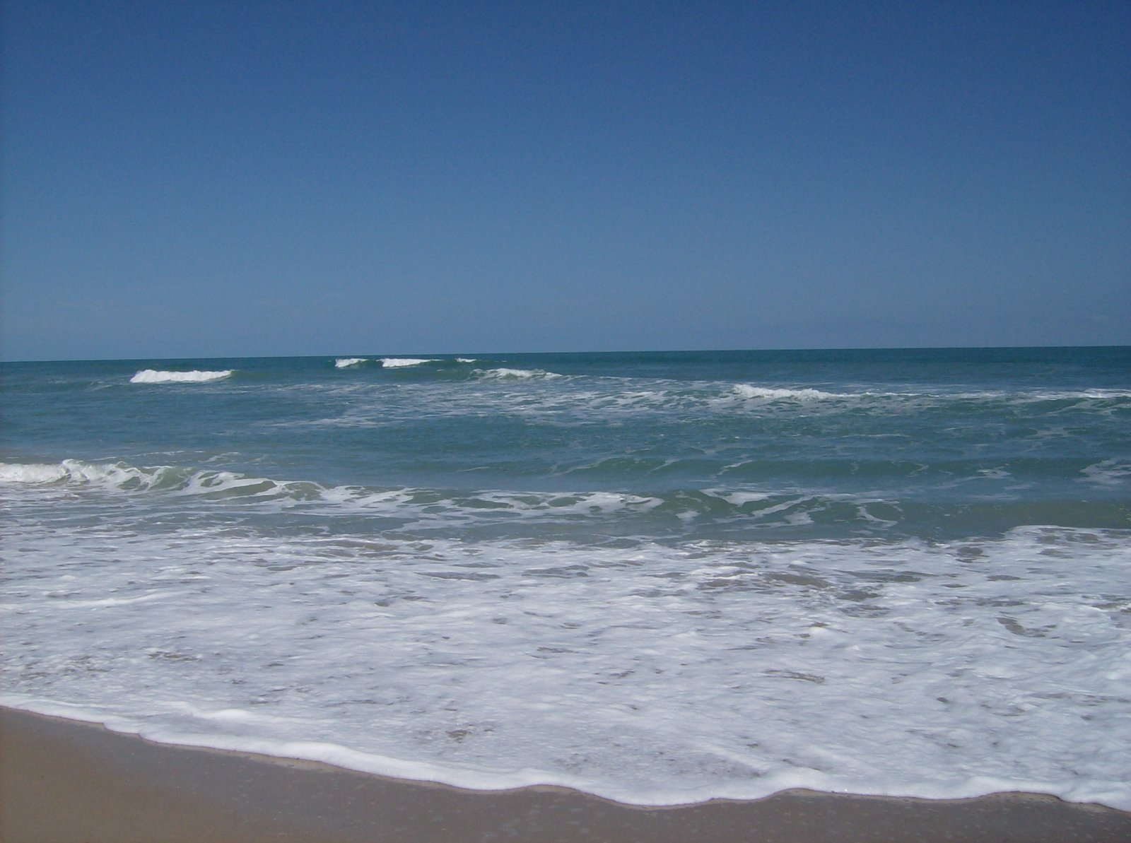 Click image for larger version  Name:Playalina Beach & Florida Gators 003.jpg Views:87 Size:229.5 KB ID:153343